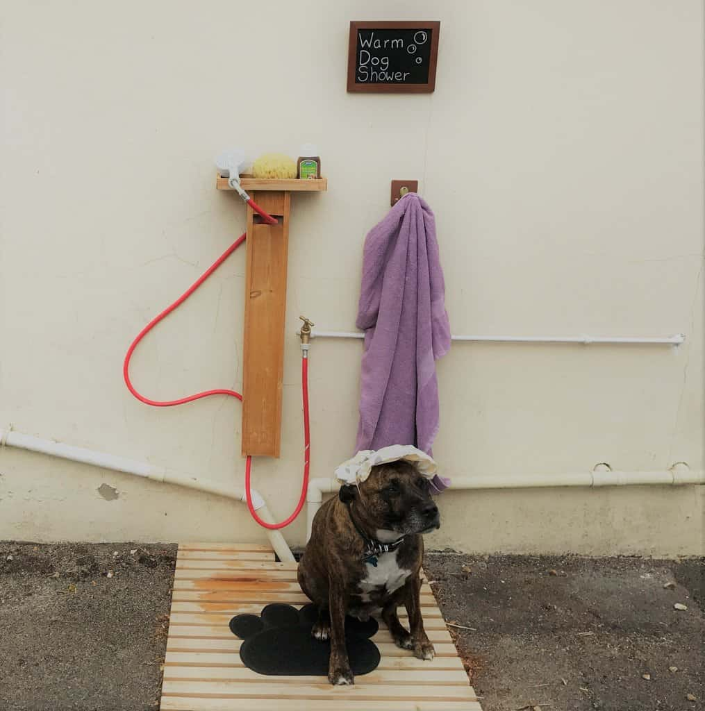 Dog Shower at Lancombe Country Cottages Dorset