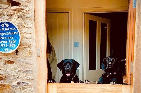 Dog Friendly Devon Holiday Cottages