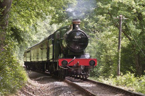 Devon Steam Railway Dog Friendly Attraction Devon