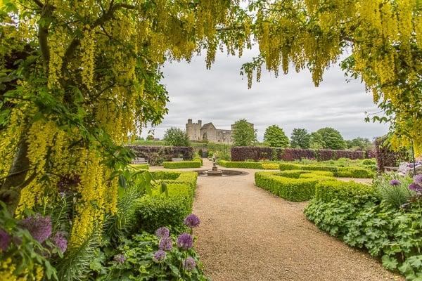Helmsley Walled Garden Laburnum Arch