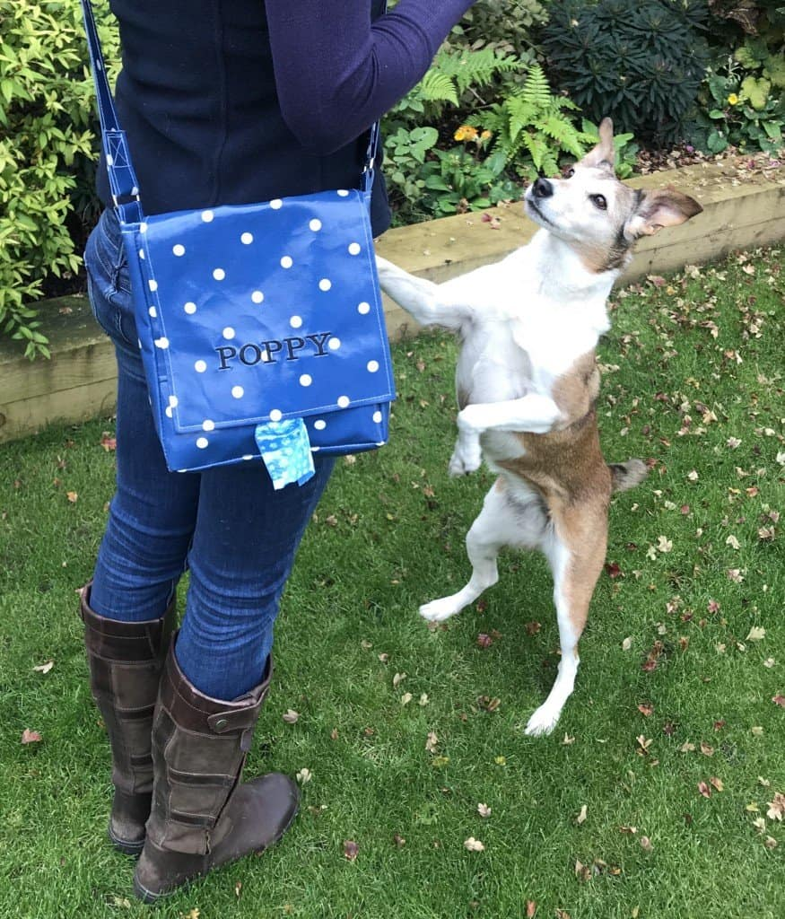 Oilcloth Dog Walking Bag