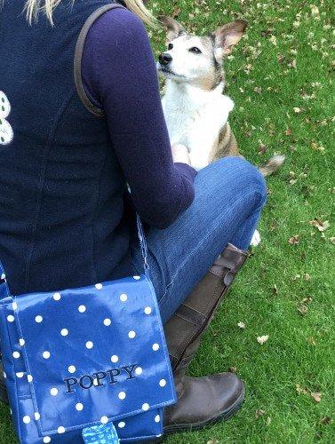 Oilcloth Dog Walking Bag