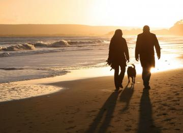 Suffolk Cottage Holidays Dog Friendly Cottages