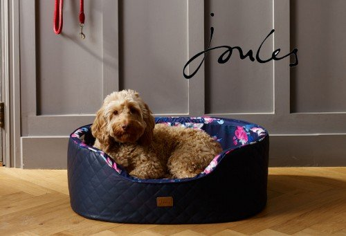 Pet Pooch Boutique Joules Dog Bed