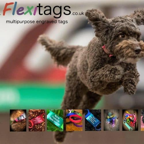 Flexitags ID Tags for Pets