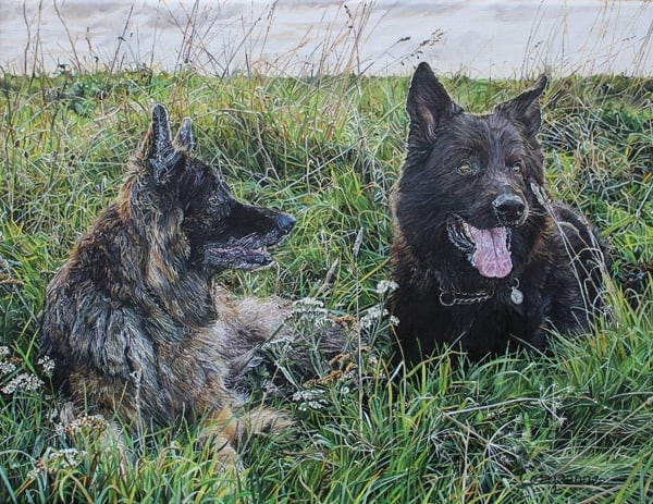 Dog Portrait Wirelife Art