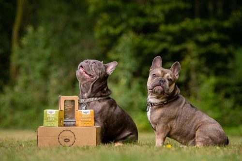 Collar Club Natural Dog Treats