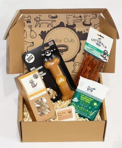 Collar Club Monthly Dog Subscription Box Example