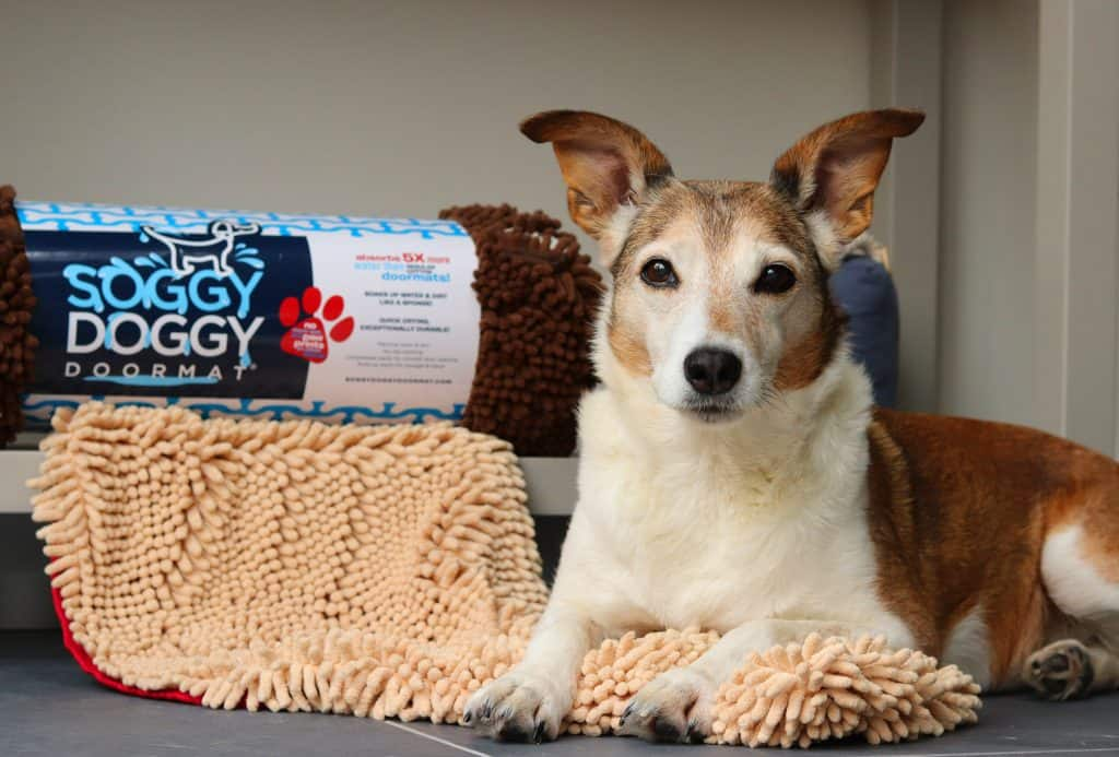 Soggy Doggy Dog Mats and Mitts