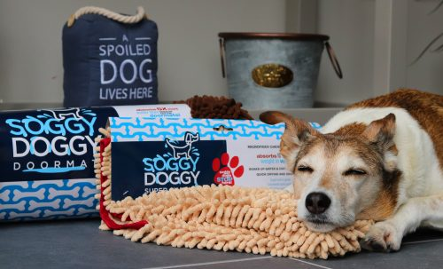 Soggy Doggy Drying Solutions For Dogs