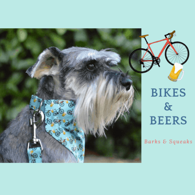 Barks and Squeaks Bikes and Beers Dog Bandana