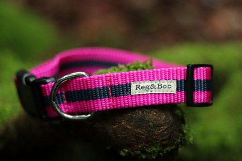 Reg and Bob Dog Collar