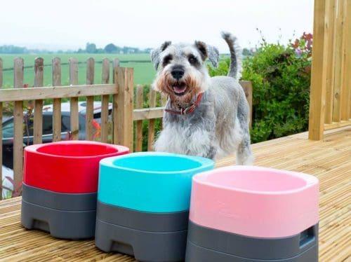 Pet Weighter No Slip Dog Bowl