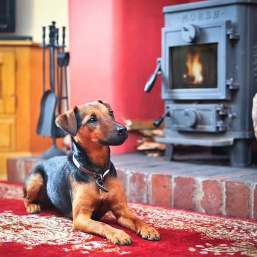 Lakelovers Cottages Dog Friendly