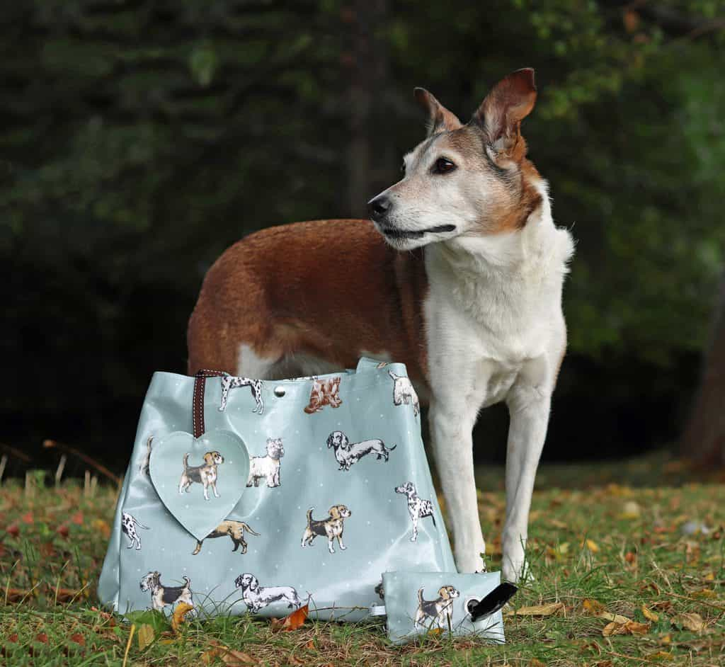 The Cosy Canine Company Oilcloth Shopping Bag and Poop Bag Holder