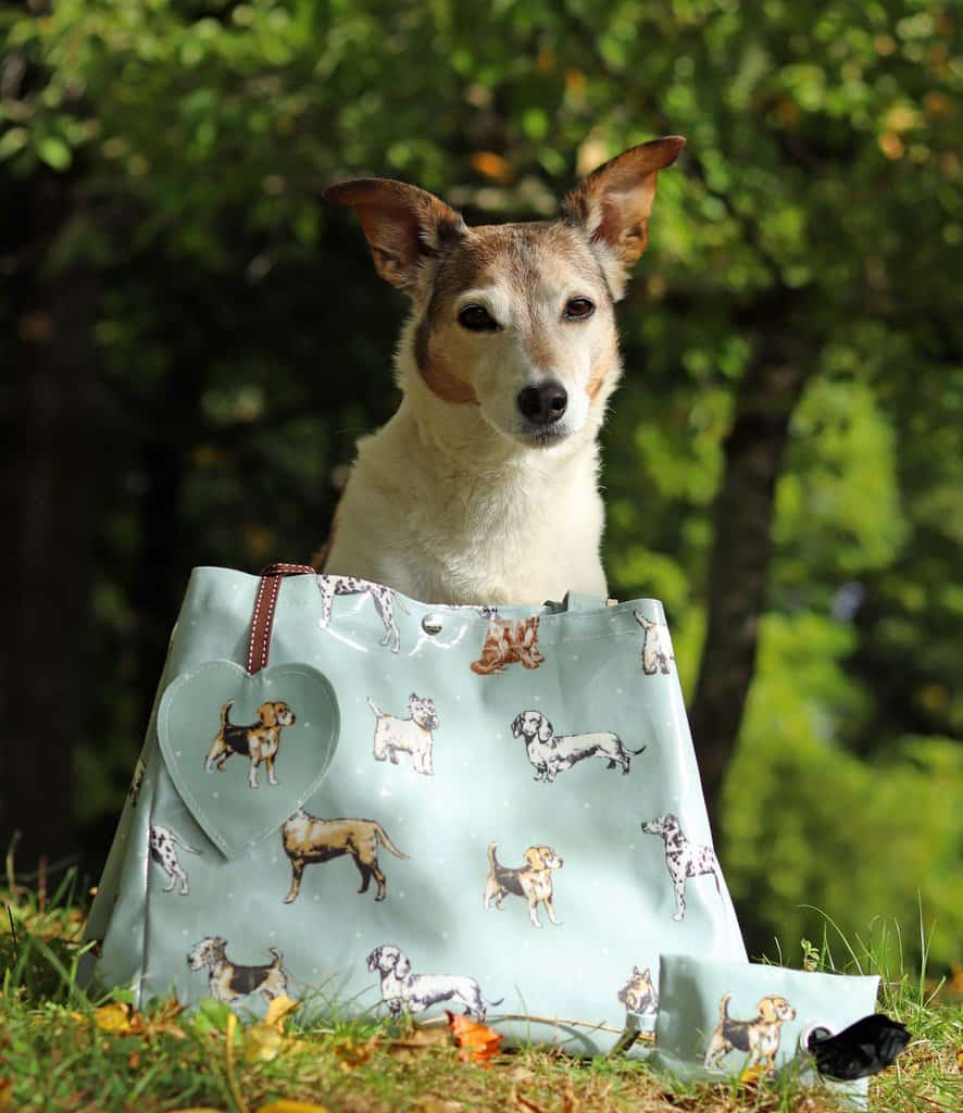 The Cosy Canine Shopper Bag