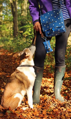 The Cosy Canine Poop Bag Holder and Dog Walking Bag