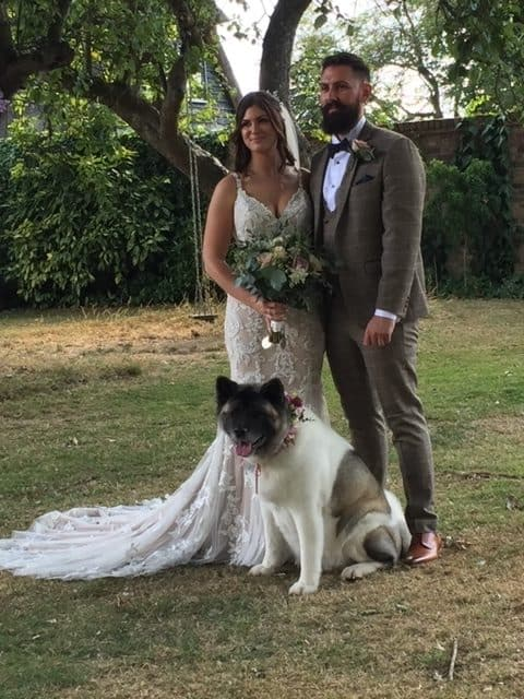 Kings Pet Dog Wedding Chaperone Kent