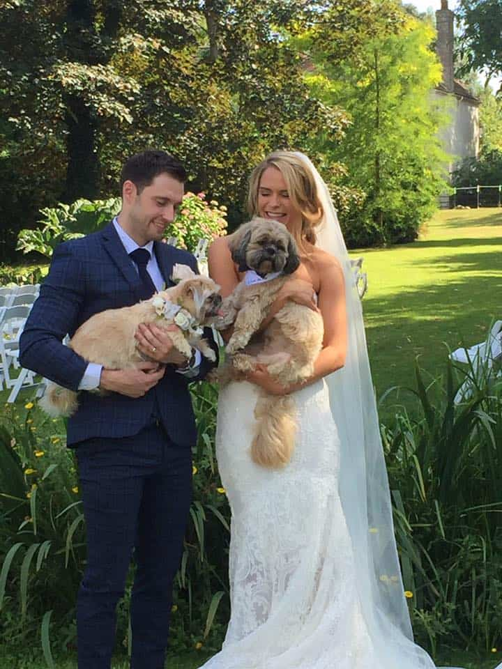 Dog Wedding Chaperone Kent