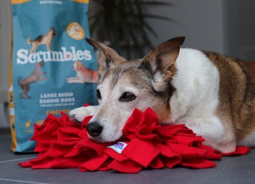 Scrumbles Dog Food Review