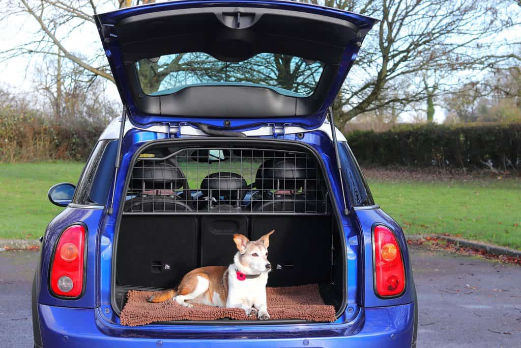 Travall Dog Guard Review
