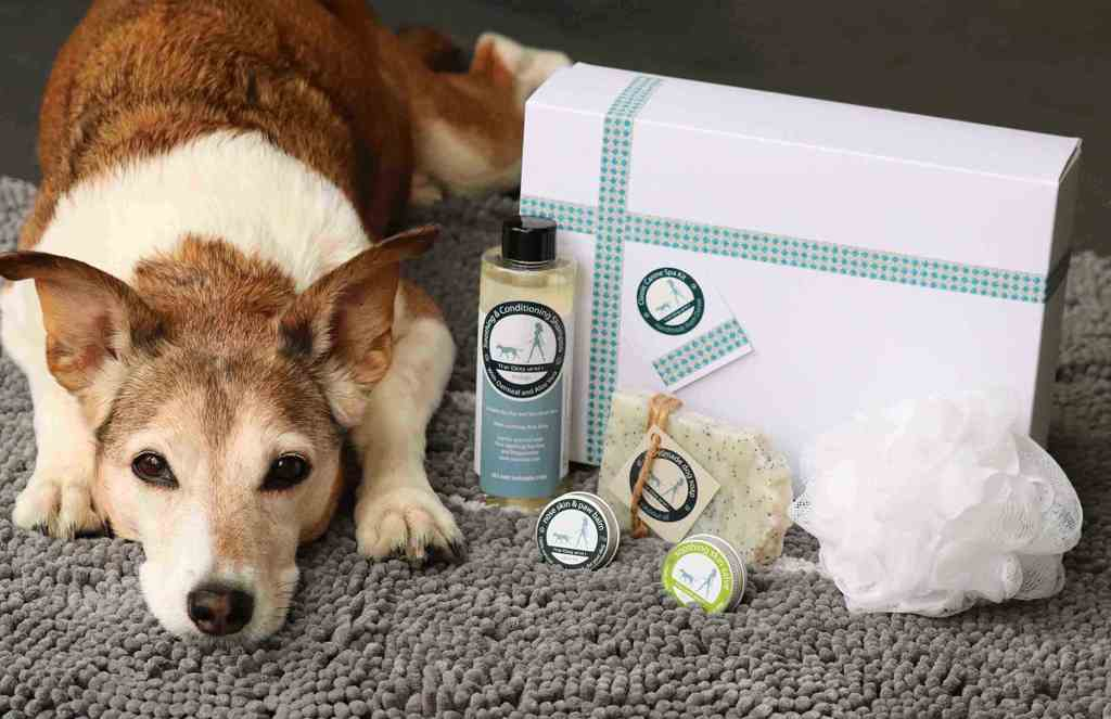 The Dog and I Canine Spa Set Review