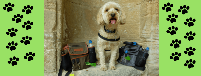 Barking Bags Dog Walking Bag