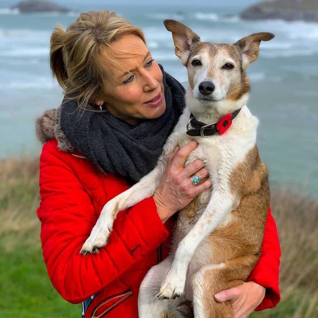 Crantock Bay Dog Friendly Holiday Apartments Cornwall