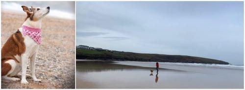Crantock Bay Beach Cornwall