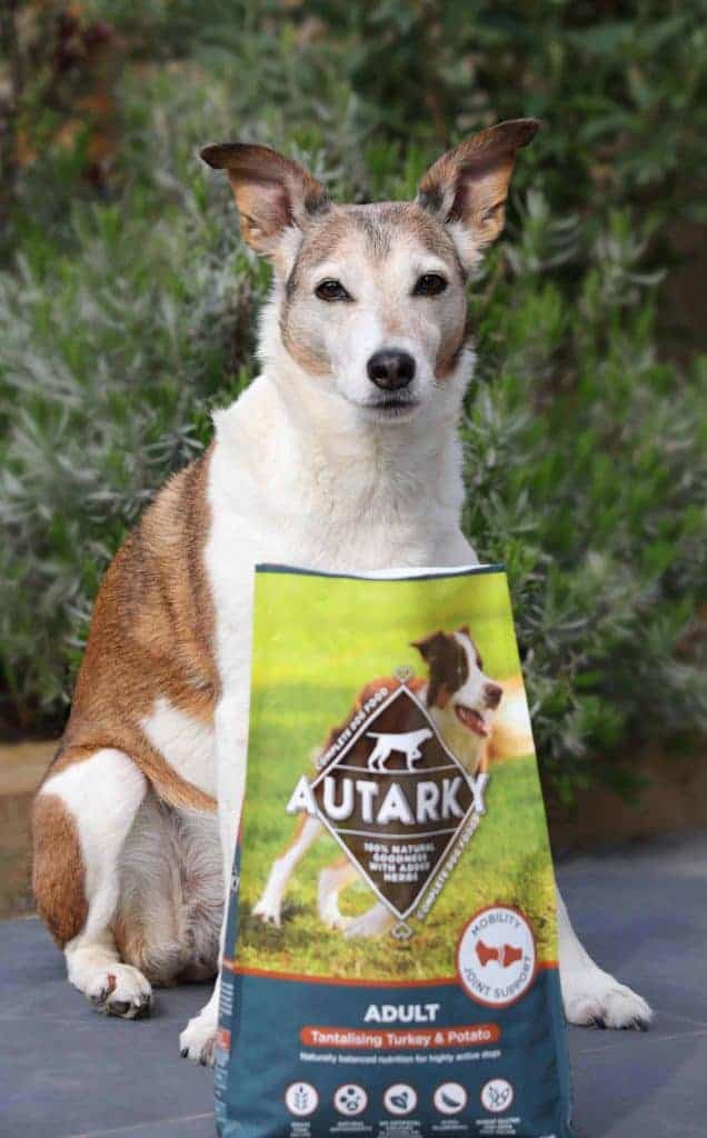 Autarky Dog Food Review