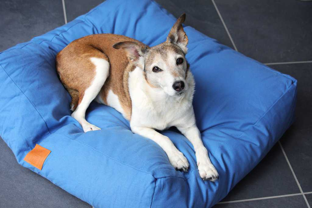 Fidos Nest Luxury Pillow Dog Beds