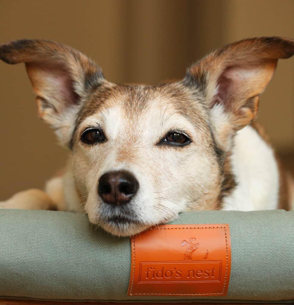 Fidos Nest Sage Green Crib Dog Bed
