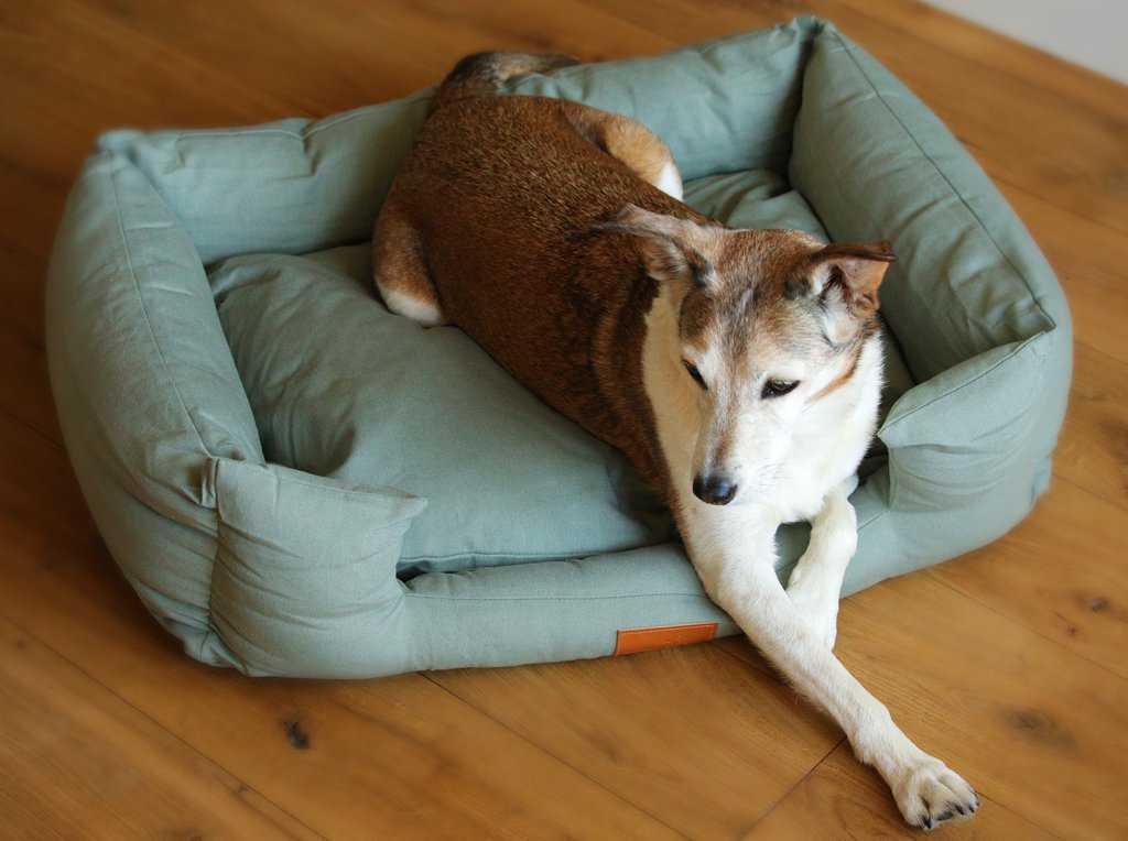 Fidos Nest Sage Green Luxury Dog Bed