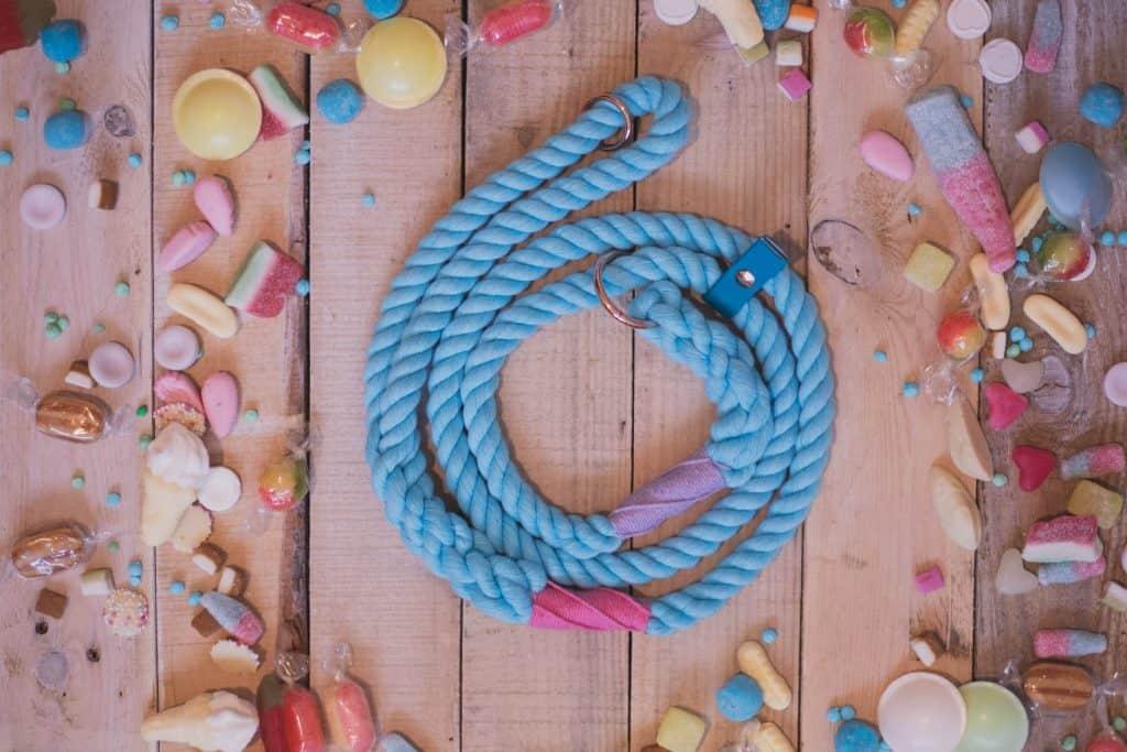 Blue Rope Dog Lead Lunas Loft