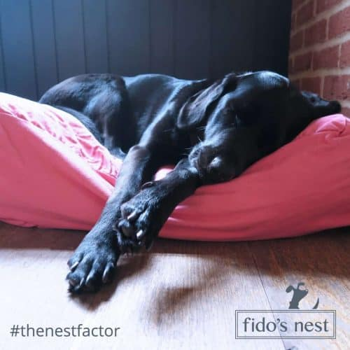 Fidos Nest Dog Bed Pink