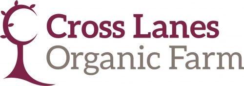 CLs_Logo_ry.jpg