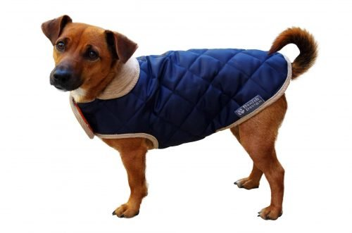 United Dogdom Quited Coats for Dogs.jpg
