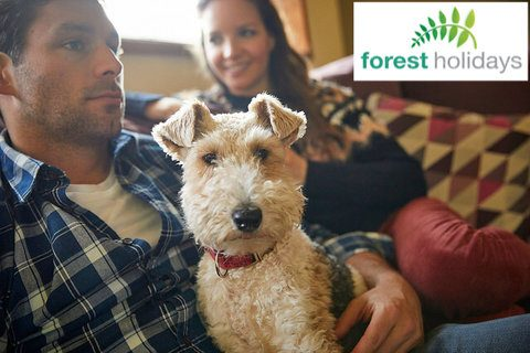 Dog Friendly Forest Holidays Forest of Dean