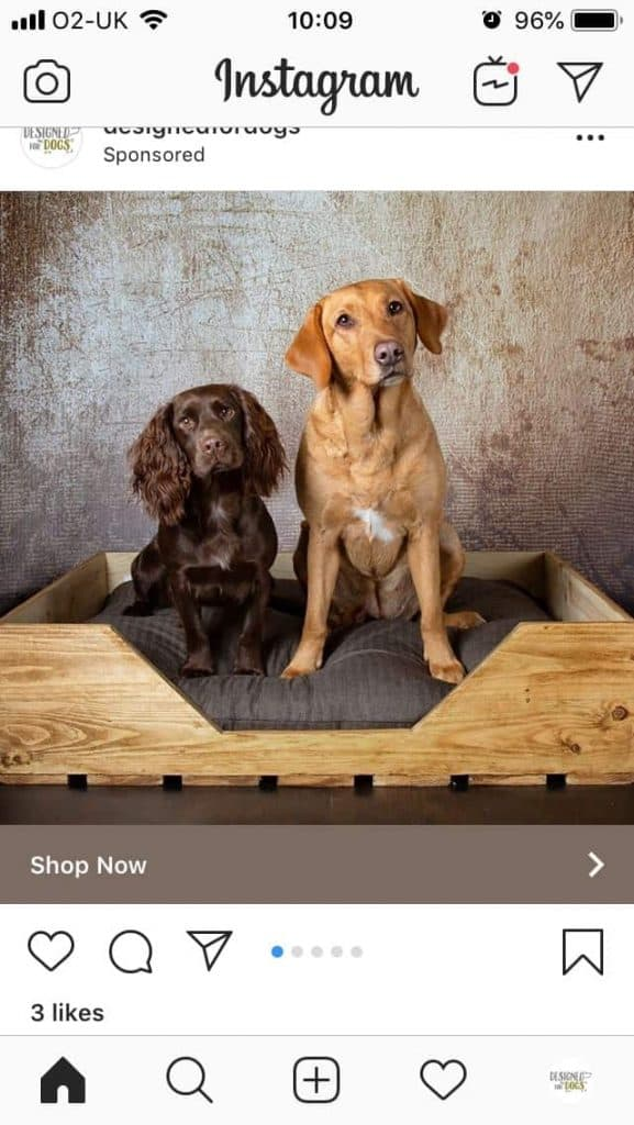 Designed For Dogs Luxury Dog Beds