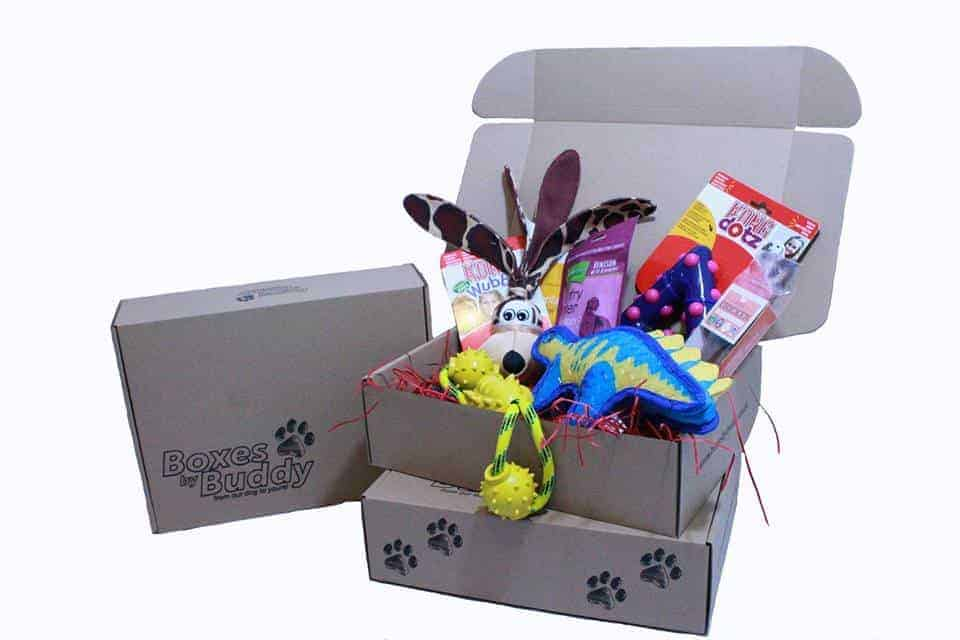 Boxes By Buddy The Personalised Monthly Subscription Box for Dogs
