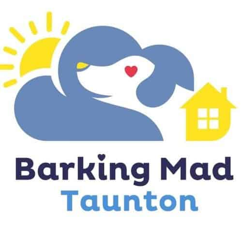 Barking Mad Dog Sitters and Dog Boarding Taunton Somerset