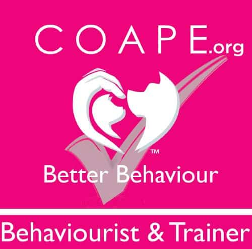 Thula Dog Behaviourist Chippenham Wiltshire
