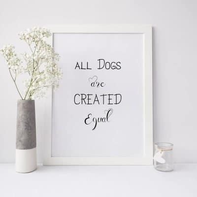 The Land of Dogs Dog Gifts