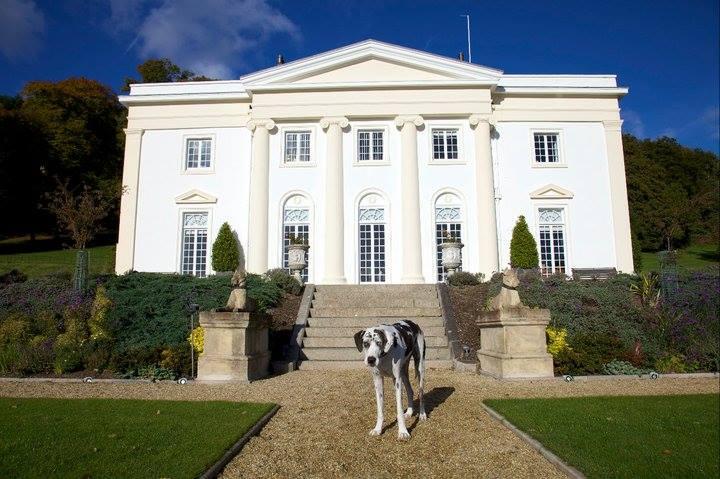 Canonteign Falls Dog Friendly Attraction Devon