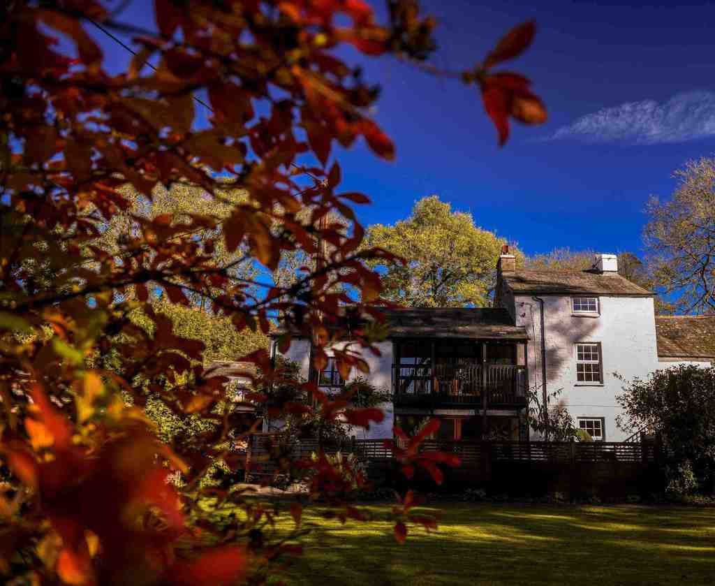 Sawmill Holiday Cottages Cumbria Dog Friendly Lake District.jpg