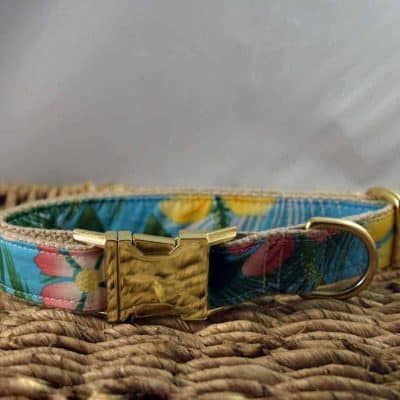 The Land of Dogs Dog Collars