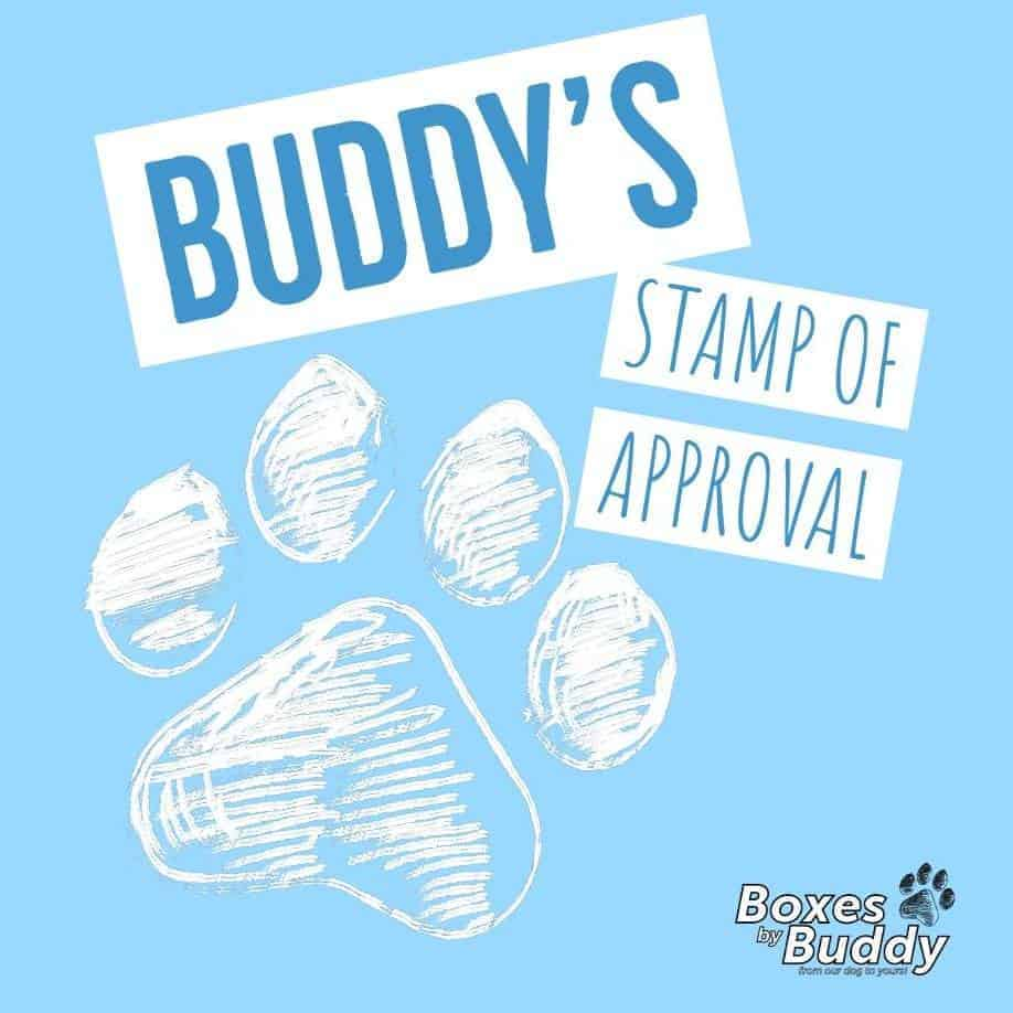 Boxes By Buddy The Fun Monthly Subscription Box for Dogs
