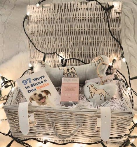 Barks and Squeaks Large gift hamper for dogs copy.jpg