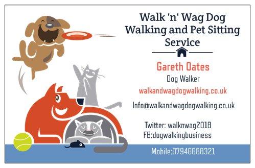 Walk and Wag Dog Walking Stoke On Trent