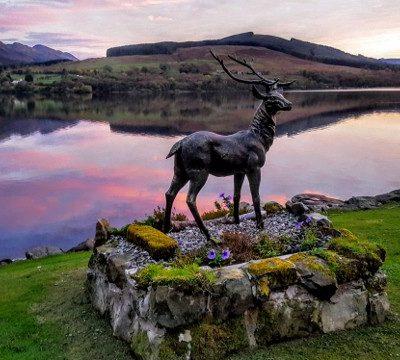 Pet friendly stag garden Loch Earn